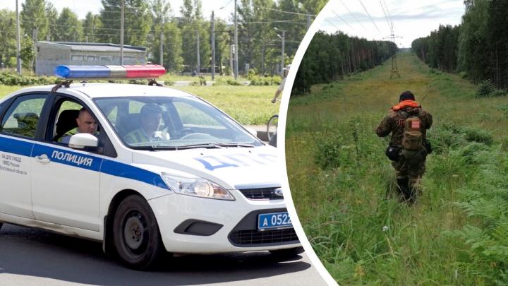 Сотни исчезнувших за год: куда пропадают люди в Ярославской области