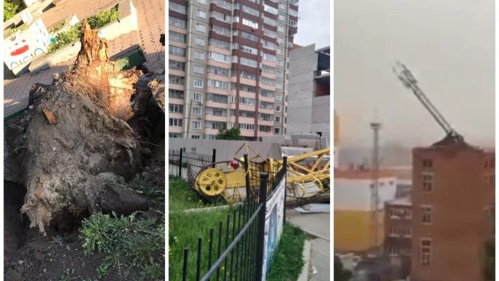 Трое погибших и сотни поваленных деревьев: как Екатеринбург пережил сильнейший ураган