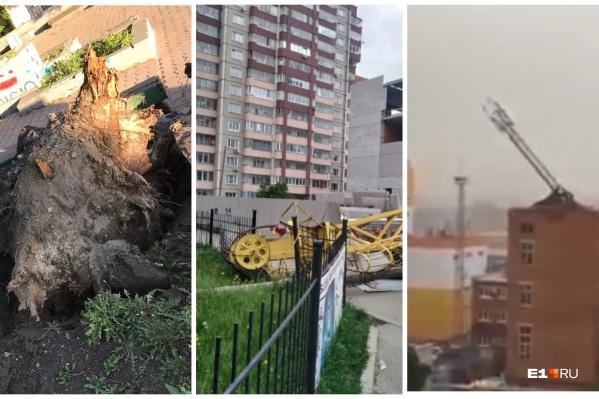 Деревья вырывало с корнем, трое человек погибли