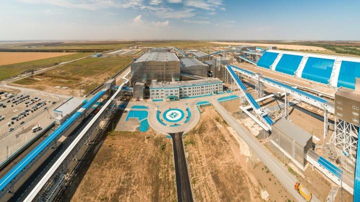 Новый проект помощи аграриям: сельхозпроизводители Юга России получат компенсацию от государства