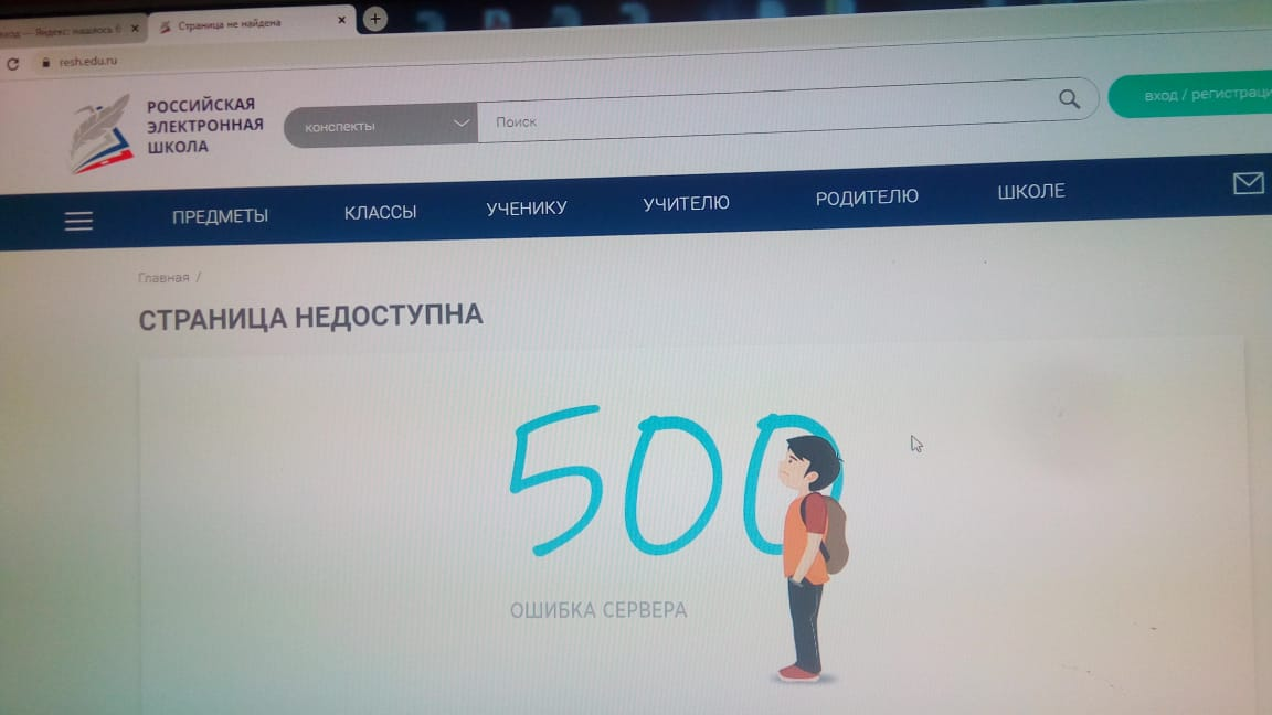 Вчера школьники Новосибирска перешли на дистанционное обучение. Родители детей жалуются, что «Российская электронная школа» не работает