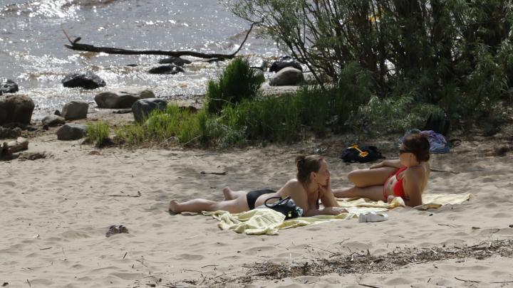 Тарелка каши перед пляжем и соленая вода: что есть в жару — лайфхаки от диетолога из Архангельска