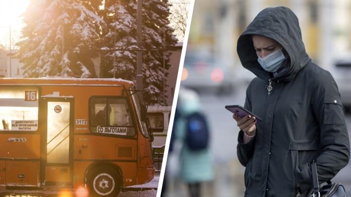 Новые COVID-ограничения и реформа транспорта: что случилось в Ярославской области за сутки. Коротко