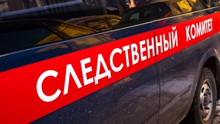 18-летний кузбассовец надругался над пожилой соседкой и ограбил ее. За это его будут судить