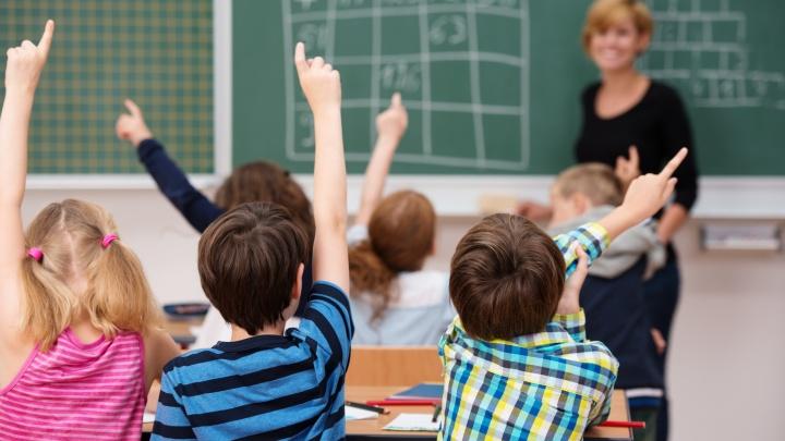 Садики и школы, куда дети просятся сами: где воспитывают и учат маленьких жителей «Кошелев-Проекта»