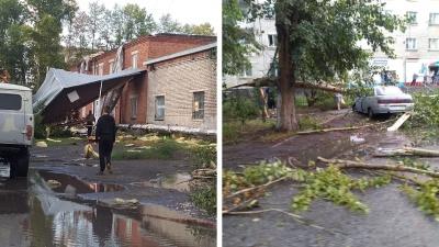В Новосибирской области 10-минутный ураган валил деревья и сносил крыши