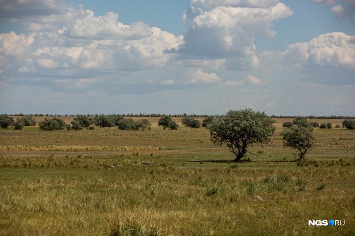 Озеро Бурсоль находится в Кулундинской степи