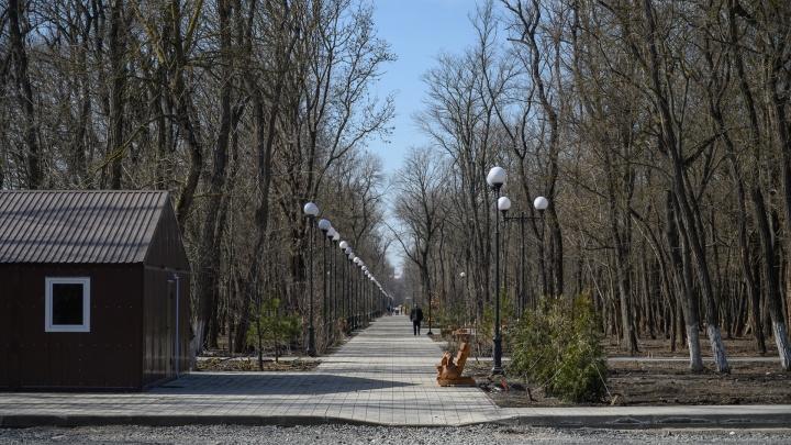 В Ростове попал под следствие директор фирмы, построившей парк Вересаева