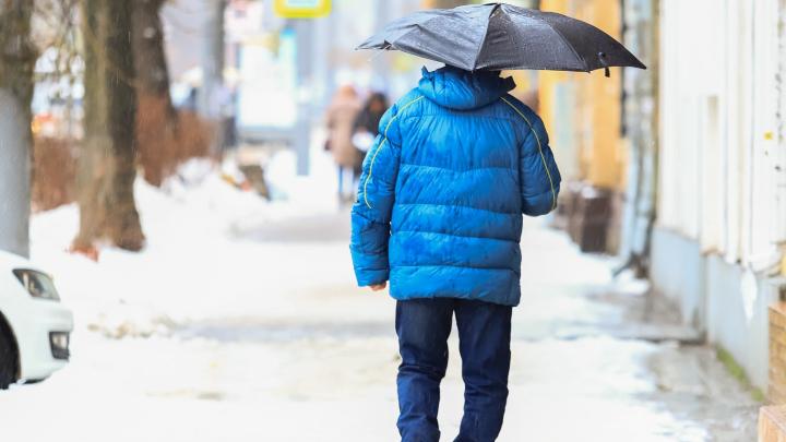 Дождались весны: какой будет погода в Ростове в выходные