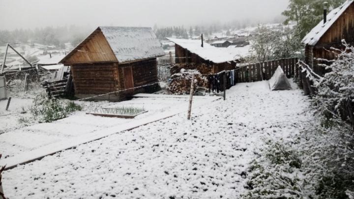 В одном из районов Башкирии ночью выпал снег. Любуемся фотографиями погодной аномалии
