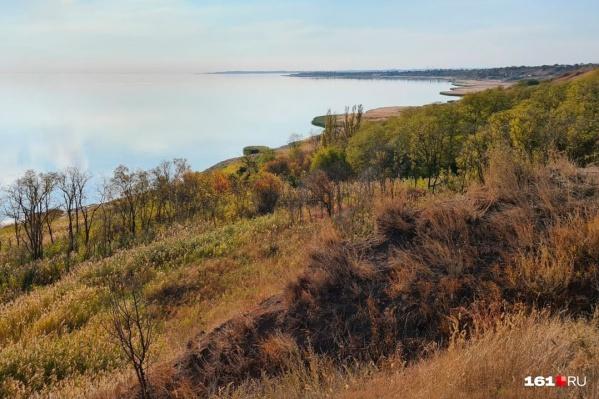 К июлю в парке высадят первый в России «кукурузный лабиринт» площадью 3 гектара<br>