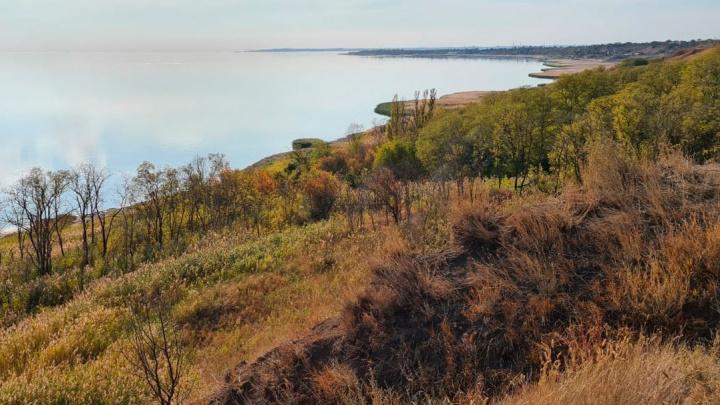 Парк на месте пансионата «Морская» под Ростовом будет платным