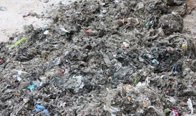 Курганцы в период самоизоляции стали чаще смывать мусор в канализацию