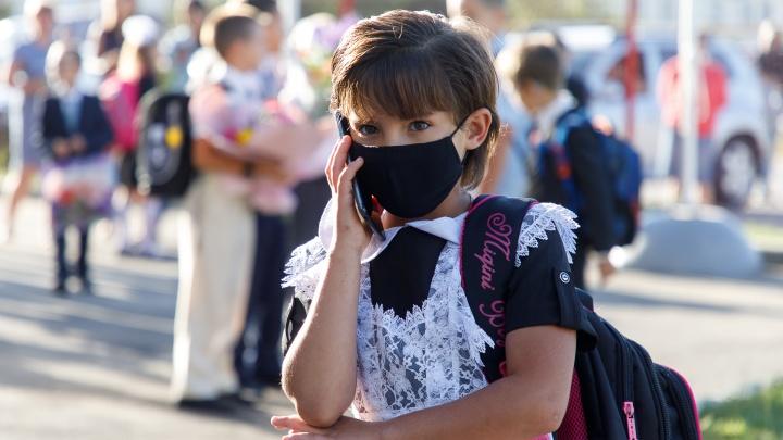 «Будем принимать точечные решения»: в Волгограде и области отказались от всеобщего дистанта в школах