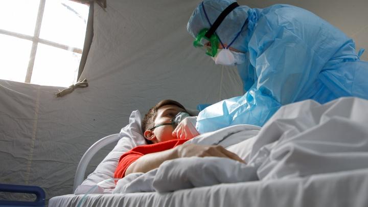 В Волгограде 1805 больных с коронавирусом: число заражённых стабильно растёт