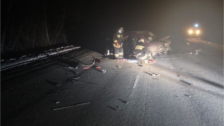 В Омской области столкнулись две легковушки: оба водителя погибли