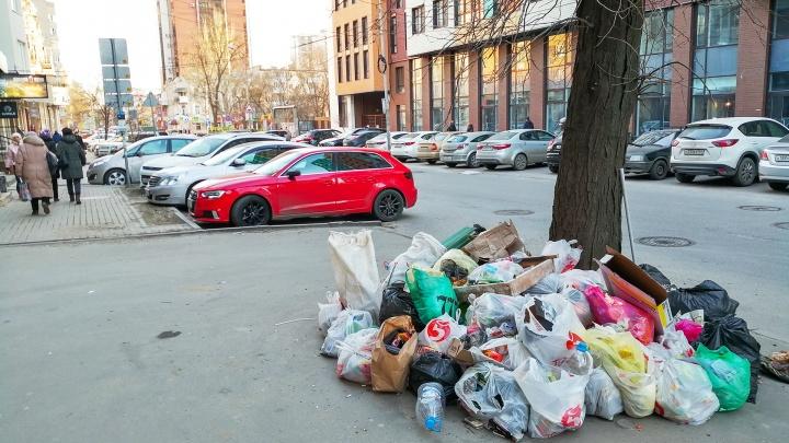 Власти Ростова рассказали, когда город избавится от мусора