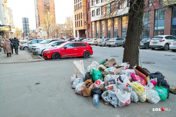 В начале 2020 года в Ростове выявили 38 свалок