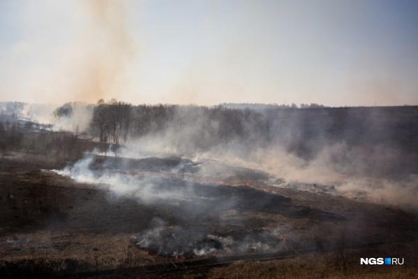 В этом году ландшафтные пожары затронули несколько районов Новосибирской области