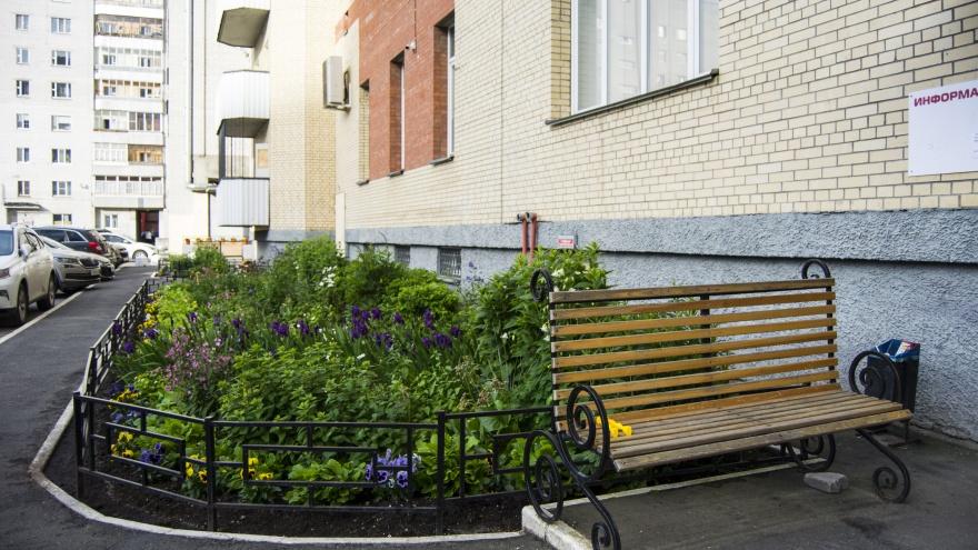 Почему садоводство теперь в тренде и как самостоятельно украсить дом растениями