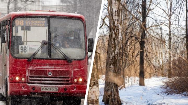 Отмена 25 маршрутов и застройка парка: что произошло в Ярославской области за сутки. Коротко