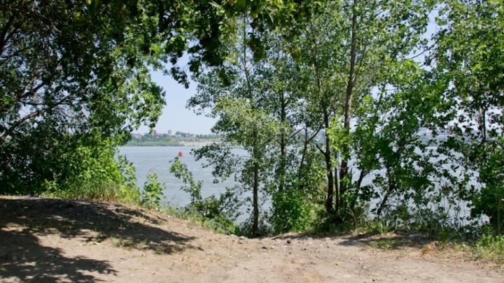 Мать и ее 7-летний сын утонули в озере в Новосибирске, когда кормили уток
