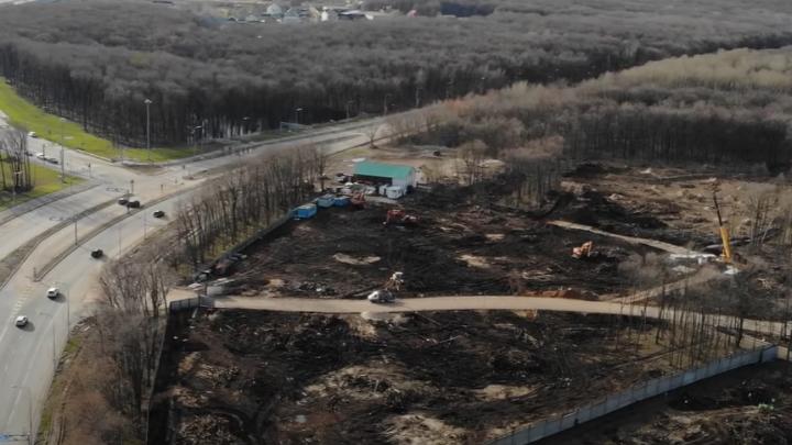 «Это мусорные заросли»: видеоблогер снял с высоты последствия вырубки деревьев у «Самара Арены»
