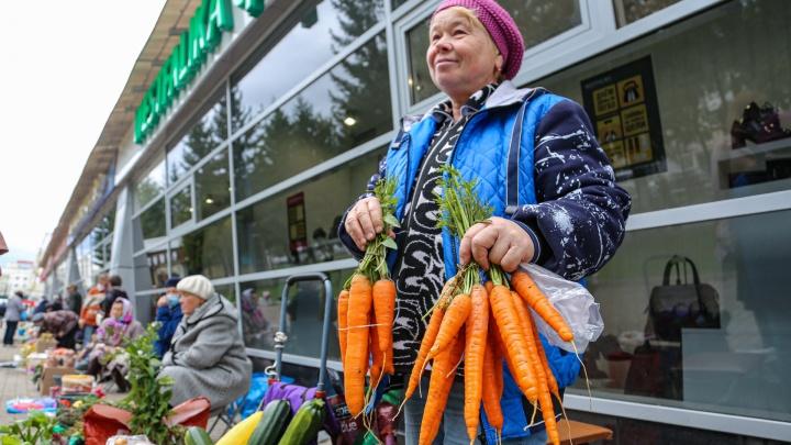 «Отдам, за сколько возьмете»: любуемся дарами осени на стихийном рынке в Уфе