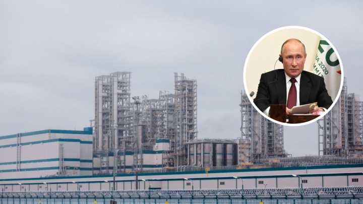 Владимир Путин рассказал, что думает о покупке акций «СИБУРа» за 100 долларов