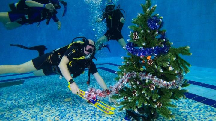 Елка на глубине пять метров. Пермские дайверы отметили Новый год под водой. Видео