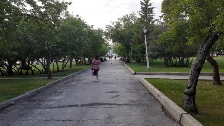 Для приезжих москвичей и питерцев отменили карантин. Что еще произошло в Новосибирске за 1 июня (хроника)