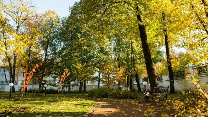 В Ярославле будет два бабьих лета: синоптики рассказали о погоде в сентябре