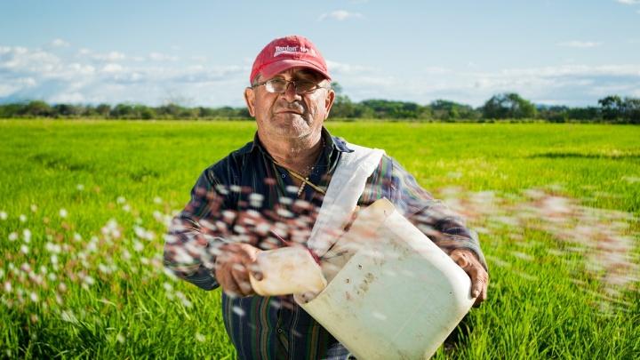 Пожар, засуха и падение самолета: аграрии смогут застраховать сельхозугодия от всех стихийных бедствий