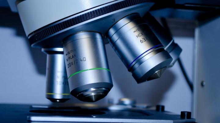 Раскрываем карты: что нового покажут под микроскопом простые бытовые вещи
