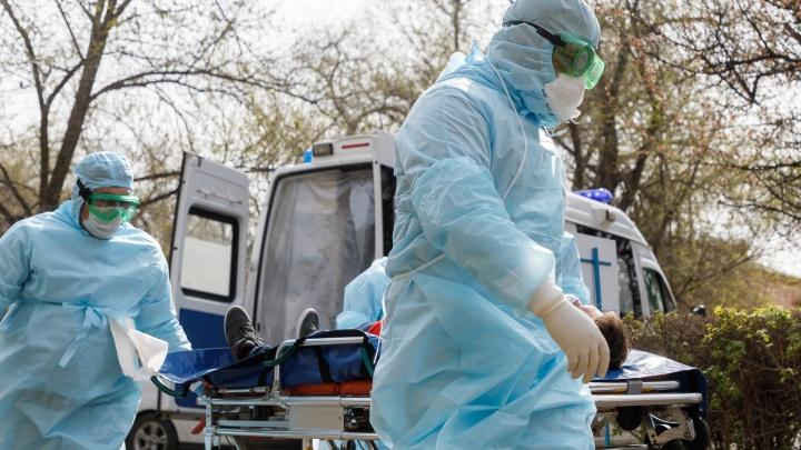 Выздоровевших все больше: смотрим на динамику заболевания коронавирусом в Волгоградской области