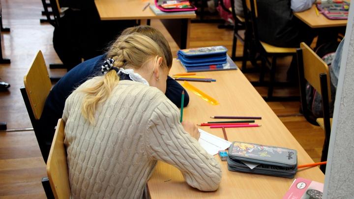 Часть классов в Омской области перевели на дистант после каникул