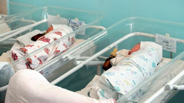 В Омской области 29 февраля родились 24 ребёнка