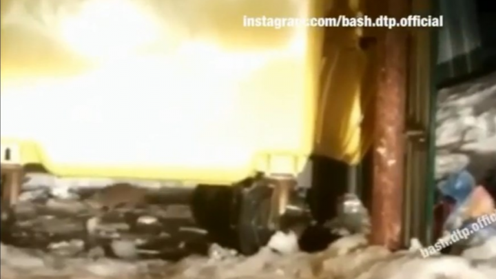 На мусорной площадке в Уфе поселились крысы, переносчиков заразы горожанин снял на видео