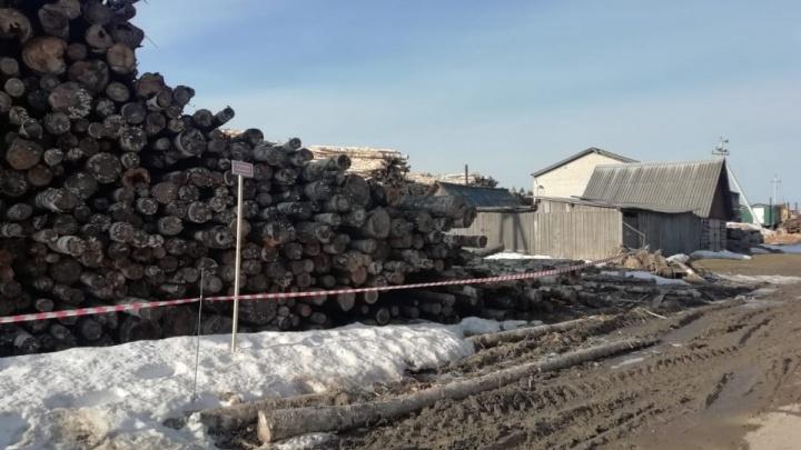 В Плесецком районе девочку насмерть придавило бревнами. Владелец деревьев заплатил за это 20 тысяч