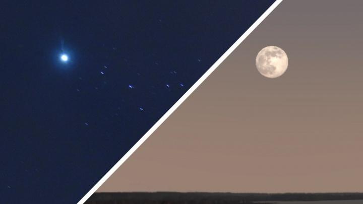 Один раз в восемь лет: тюменцы смогут насладиться редким астрономическим явлением в начале апреля