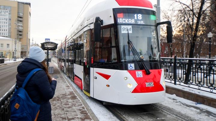 Скоро поедем? Проект трамвайной ветки до Академического получил одобрение госэкспертизы