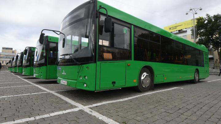 Тестируем новенькие автобусы: на дороги города выйдут девять дизельных МАЗов
