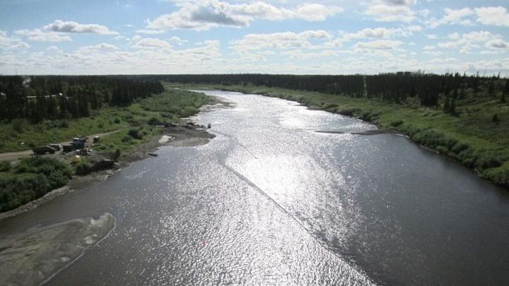 В НАО на реке Колва возле Харьягинского месторождения произошел разлив нефтепродуктов