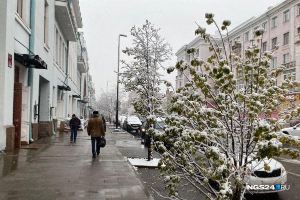 Снег в этом году выпал раньше обычного, уверены синоптики