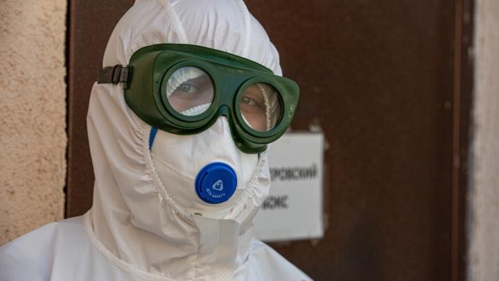 НСО неделю бьет антирекорды по заболеваемости коронавирусом