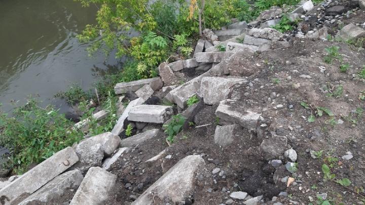 «Все будут стараться вас задавить»: журналист НГС о том, как 3 месяца заставляла власть спасти реку