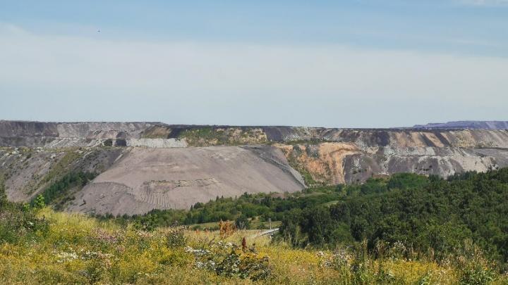 Угольная компания испортила десятки тысяч квадратов сельхозземель Кузбасса. И получила штраф