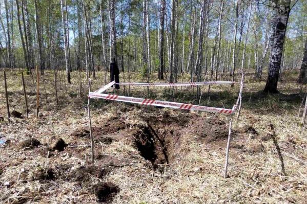 Тело пропавшего без вести нашли в тюменском лесу