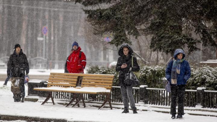 Это будет скандинавская зима: синоптики дали долгосрочный прогноз для жителей центра России
