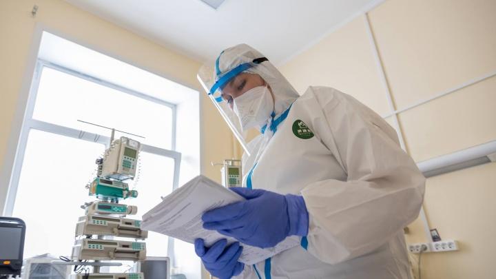 Коронавирус в Кузбассе: еще 174 заболели, 5 — умерли